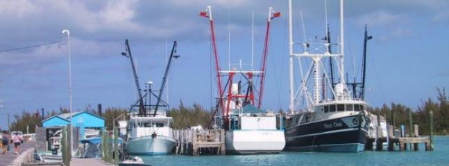 Lobster fleet at home for a while