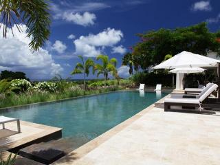 Stunning 5 Bed Villa with Private Infinity Pool, St. James