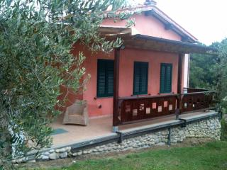 Lucca countryside house WiFi Olive Groves - TFR4, San Macario in Monte