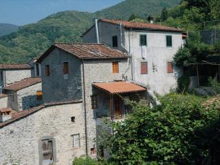 Villa Piegaio Alto near Lucca - TFR17, Pescaglia