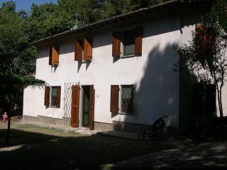 Villa Pisa Hillside country house - TFR18, Avane