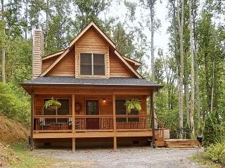 Snowy Cove | 2 BR Mountain Cabin with Hot Tub and Fireplace, Black Mountain