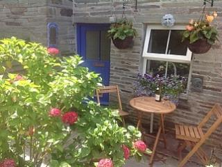 Delightful,cosy cottage near Port Isaac Cornwall, Saint Teath