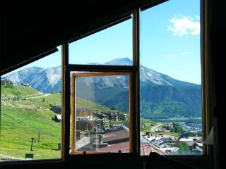 Axtel #411, Crested Butte
