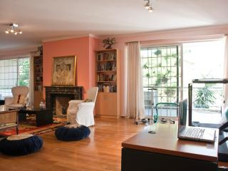 Very big living room+fire place+fully equipped GYM-huge  veranda