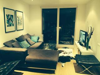 Modern Apartment next to DLR station (Greenwich), London