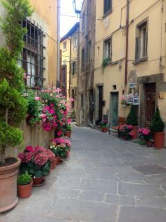Small street in centre of Cortona