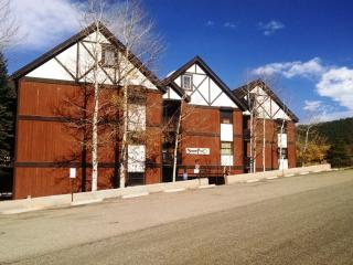 3 BR/ 2 BA Condo, WiFi, Balcony, 3 Blocks to Lift, Angel Fire