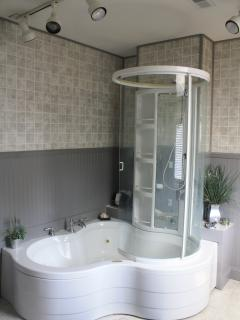 Two person jacuzzi tub with shower