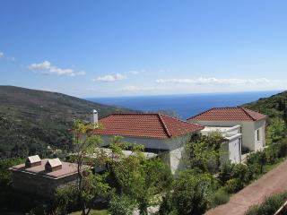 Design villa in Andros with panoramic view around