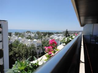 Large apartment, amazing views with huge terrace, Alameda