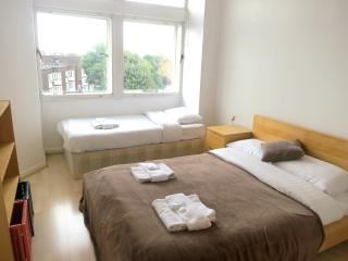 Entire 2 Bed Apartment, Central London