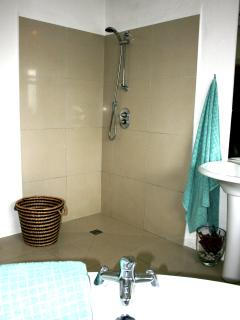 Shower area in the bathroom