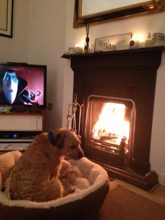 Dog friendly!  Bed and bowls provided and a fire in Winter to keep warm!