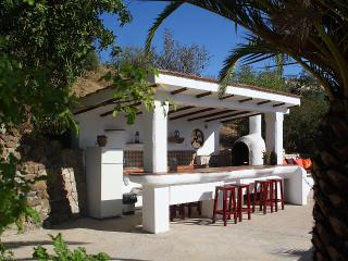 The outside bar with BBQ and fridge