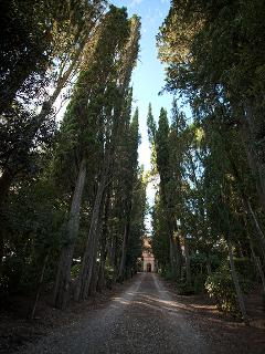 Villa Humbourg, Tuscany, Apartment Mirtillo