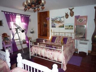 La chambre 1900 - Durfort Saint Martin De Sossenac, Anduze