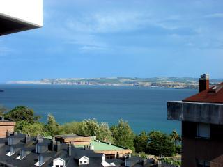 Apartment 10 min. walk to beautiful beaches, Santander