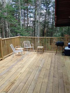 view of the deck from the pines