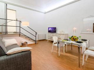 Luxury 2 bed apartment in Florence within walking distance of sights (BFY14013)