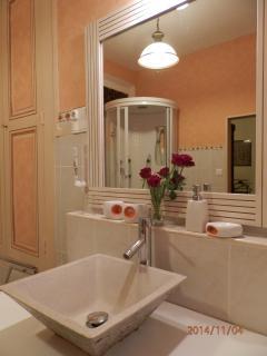 La vasque avec, en jeu de miroir, la douche