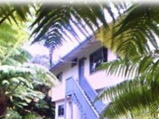 Jade House 3 Bedroom/2 Bath - sleep14 whole ho, Volcano