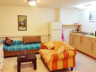 One-bedroom apartment near SHIBA Mendess 6, Ramat Gan