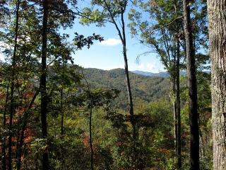 Treetop Cabin for 4 - Close to Bryson City, N.O.C