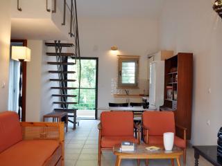 Apartment near the sea in Nikiti