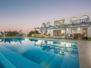 Amor a dream holiday fully private villa in Plaka
