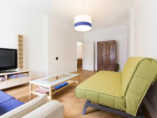 Ljubljana places - Spacious apartments (Ap. No. 5)
