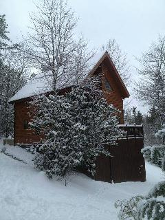 Wrapped in Winter, Our Snowy Cabin in a Winter Wonderland