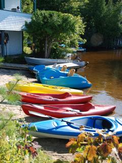Clyffe House: Kayaks, Canoes, paddle-boats and electric fishing punts