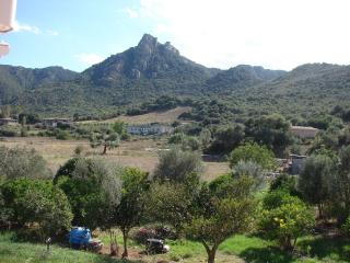 A COZY VACATION PROPERTY LAIN AT 1300 METERS FROM