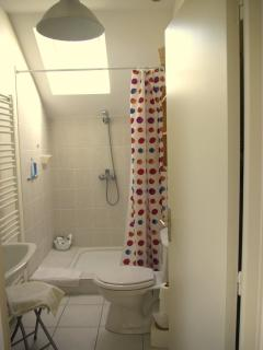 Salle de bain du 1er : douche et toilettes / First floor shower room + WC