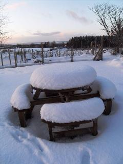 Outdoor Dining area!