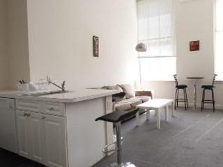 FURNISHED RITTENHOUSE 1BR LOFTSTYLE PLUS SOFABED, Philadelphie