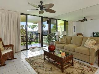 One Bedroom Kamaole Sands Condo (Across frm Beach), Kihei