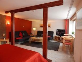 LLAG Luxury Vacation Apartment in Koblenz - 581 sqft, direct views to the Rhine River, great location…, Coblence