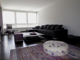 Modern apartment in City center, Sarajevo