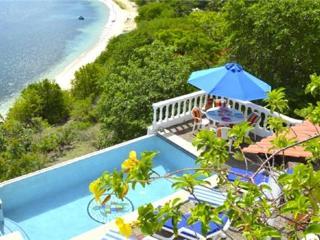Las Tortugas Villa - Carriacou