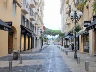 Rue Paradis Apartment 1,