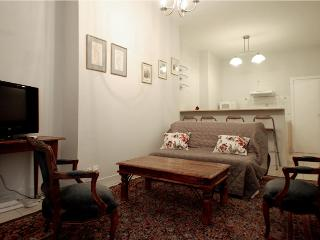 Very quiet and charming apartment, center of Paris, Parijs