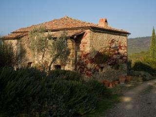 Historical Villa in Tuscany with pool, Civitella in Val di Chiana