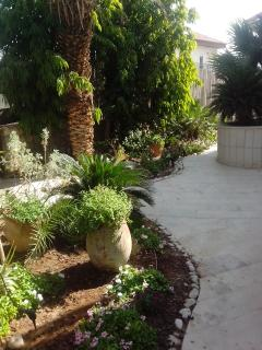 VIP suites in private villa, pool close to the sea, Eilat