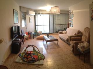 lightened open large space furnished apartment wit