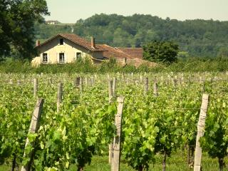 "Farmhouse-vineyard, views, pool, wifi, games-room - ""Le Prunier"" at Les Marais, Bergerac"