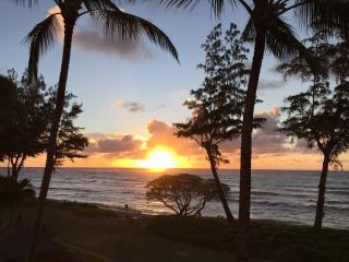 Kauai Oceanfront Top Floor Studio Paradise