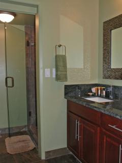 New Downstairs Bathroom