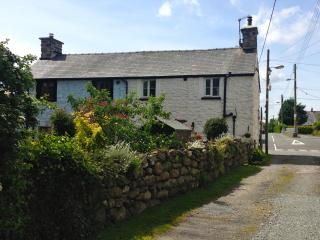 Golan- Traditional Semi Detached Cottage near Bala, Llanuwchllyn